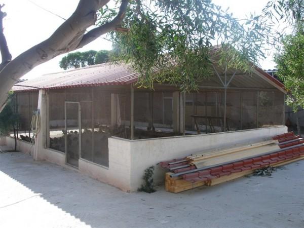 Εκτροφείο κυνηγετικού συλλόγου σύρου