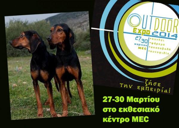 outdoor-expo