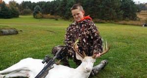 albino_deer