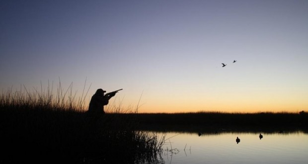 Duck-Hunting