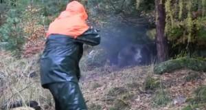 Wild-boar-Attack
