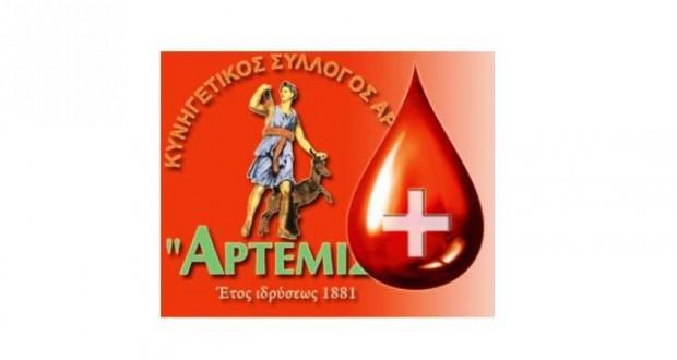 ks artemis_aimodosia