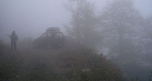 hunyer in fog